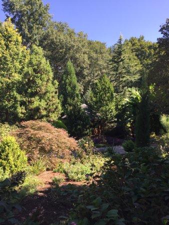 Hatcher Garden Woodland Preserve Spartanburg Sc Omd Men