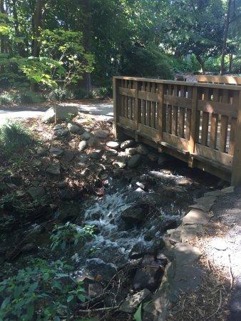 Hatcher Garden Woodland Preserve Spartanburg Sc Top Tips Before You Go With Photos