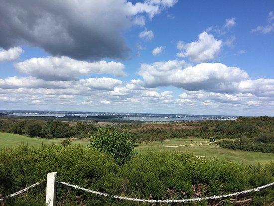 Isle of Purbeck Golf Club: photo0.jpg