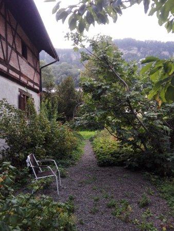 Hostel Feldkirch: A nice place to chill - the garden