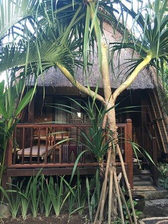 Alam Nusa Huts and Spa : photo0.jpg