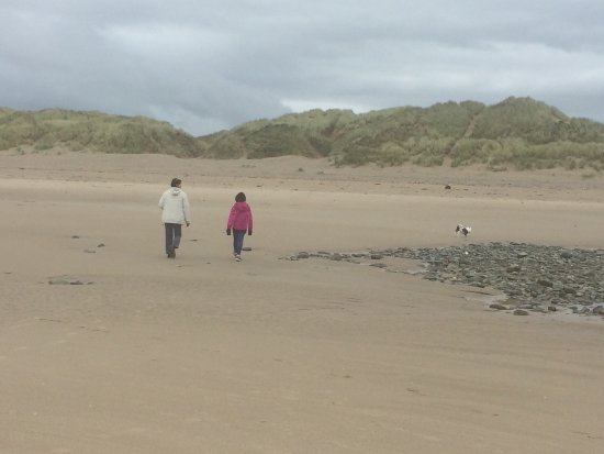 Ynyslas National Nature Reserve: photo1.jpg