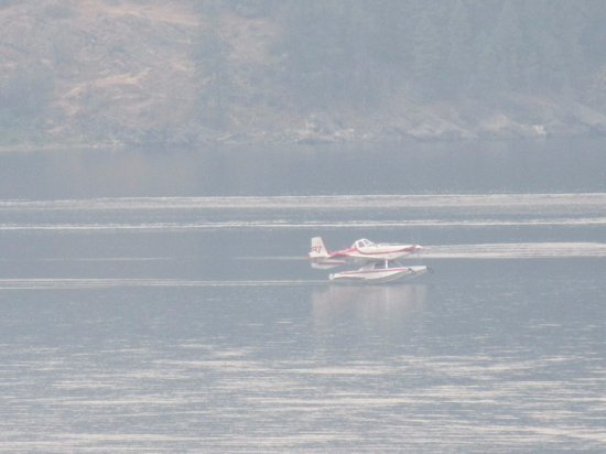 Fire fighting plane on Moyie