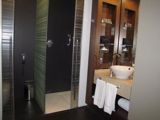 Olivia Plaza Hotel: shower