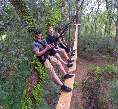 Brooksville, FL: Take to the trees for an adventure on over 130 obstacles!