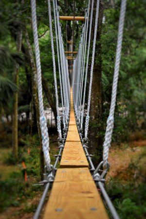 Brooksville, فلوريدا: Your adventure starts now