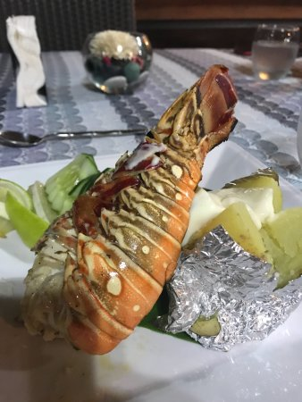 Royal Palm Island Resort: The lobster we caught, lots of fun!