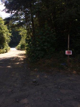 Port Alberni, Kanada: Park signage - keep an eye out!