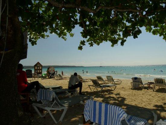 CocoLaPalm Resort : CoCo La Palm