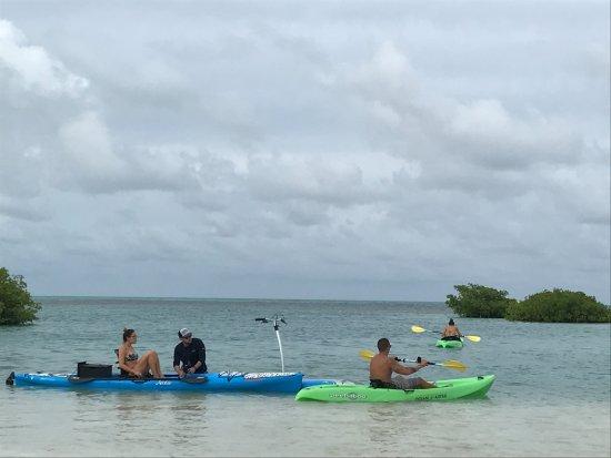 Royal Palm Island Resort: kayaking