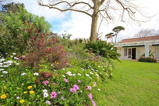 Beluga of Constantia Guest House Photo