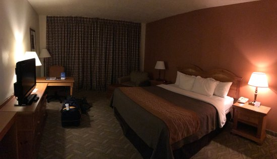 Comfort Inn Downtown: Kingsizebett