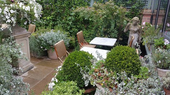 The Ivy Marlow Garden: SUMMER RAINY GARDEN