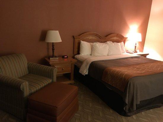 Comfort Inn Downtown: Fernsehsessel und großes Bett