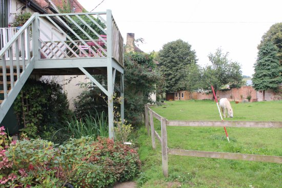 Hollesley, UK: This is a great place to stay for either camping etc as it is an equestrian farm .hope to return