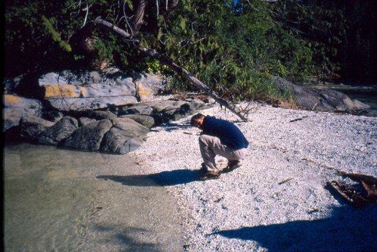 Gods Pocket Marine Provincial Park: beaches