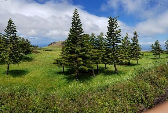 Hawi, HI: Absolutely beautiful