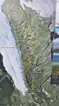 Exit Glacier Harding Icefields Trail Map Picture of Exit Glacier