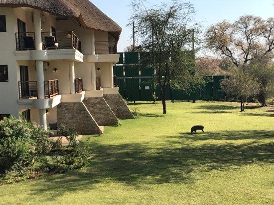 Ilala Lodge: photo0.jpg
