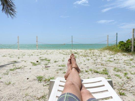 Ecohotel Flamingo Playa : Hotelstrand