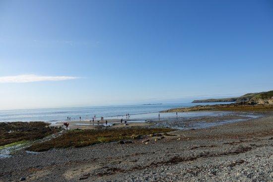 Carreglwyd Borthwen Barns: Beach a minutes walk from the Big Moo