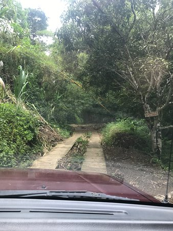 Minca, Colombia: roads getting smaller..