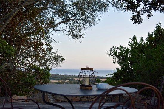Photo de domaine de murtoli sart ne tripadvisor - Domaine de murtoli restaurant ...