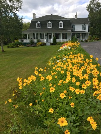 Auberge La Mansarde : Lovely flower garden lining the driveway up to the house