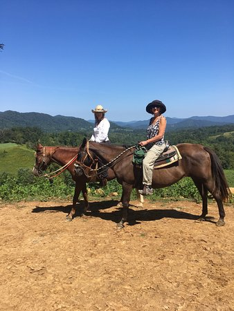At Sandy Bottom Trail Rides - Picture of Sandy Bottom Trail Rides