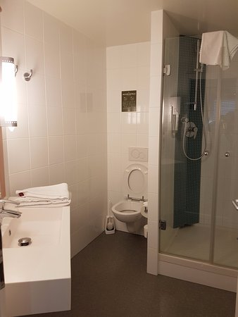 ibis Geneve Centre Nations : Fairly spacious bathroom