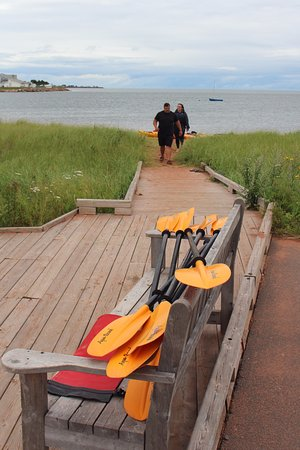 By The Sea Kayaking : path to the water for kayaking!
