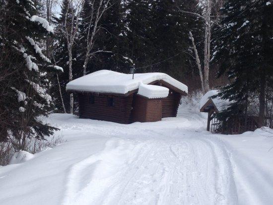 Parc National d'Aiguebelle: La Puce d'eau sous la neige