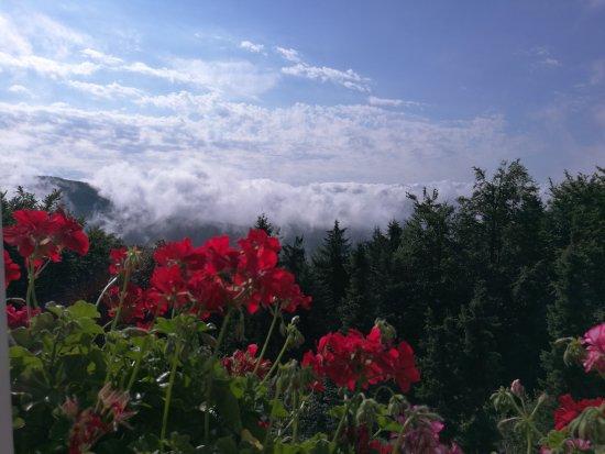 Horni Becva, Çek Cumhuriyeti: Výhled z okna...