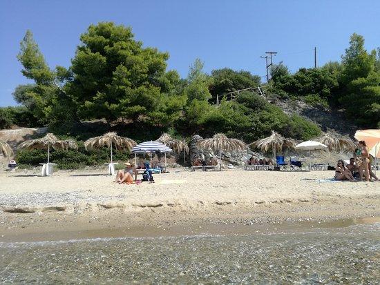 Vatopedi, Grecia: IMG_20170819_114823_large.jpg
