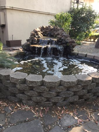 Creekside Inn - A Greystone Hotel: Little waterfall outside pool area