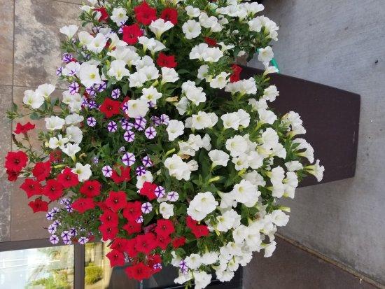 SpringHill Suites Coeur d'Alene : 20170710_191930_large.jpg