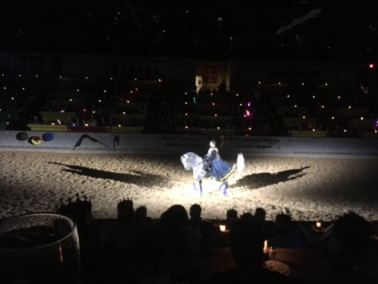 Medieval Times Maryland Castle: photo2.jpg