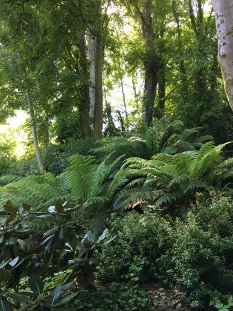 Menai Bridge, UK: Plas Cadnant Hidden Gardens