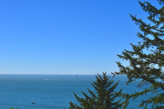 Ilwaco, WA: The Ocean view.