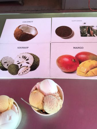 Daintree Ice Cream Company照片
