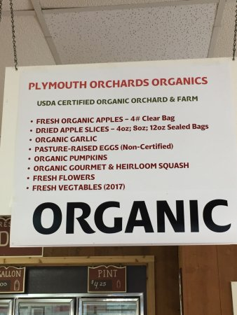 Plymouth Orchard and Cider Mill照片