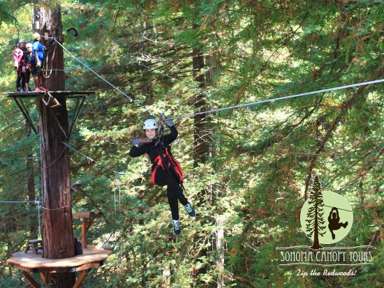 Sonoma Canopy Tours: My teenager striking a pose while zipping.