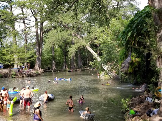 ‪‪Spicewood‬, تكساس: People chilling at Krause Springs‬