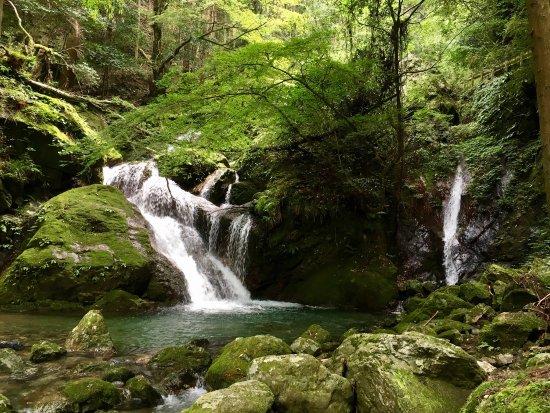 Kamiyama-cho, Japan: photo2.jpg