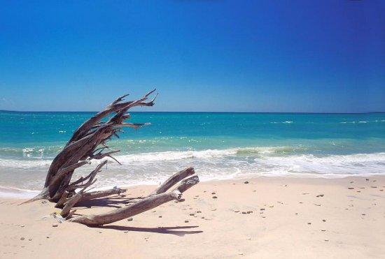Nosara Beach (Playa Guiones): Il mare cobalto