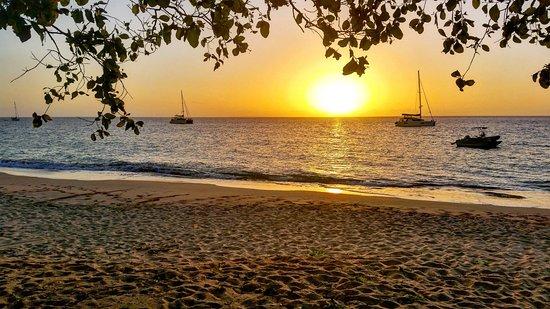 Uoleva Island, Tonga: IMG_20170723_210309_033_large.jpg