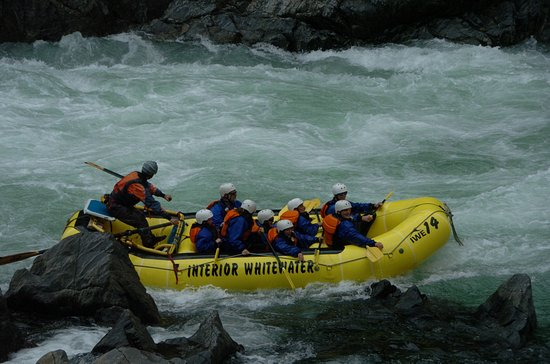 Interior Whitewater Expeditions - Day Tours: coming out of the rapid