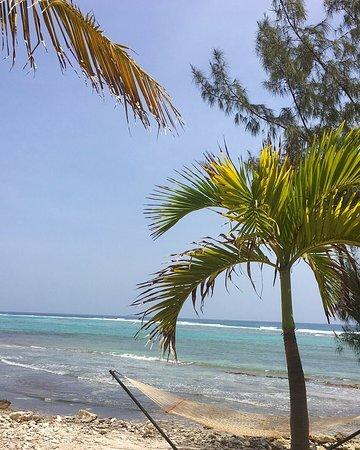 Paradise Villas: photo5.jpg