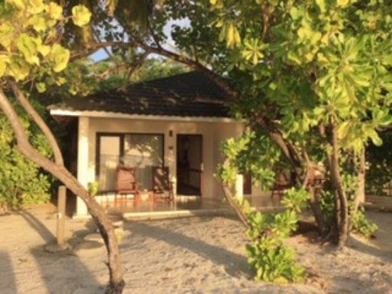 Superior Beach Bungalow Facing The Beach Picture Of