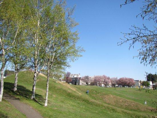 Baba Park